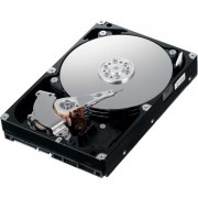 "3.5"" Western Digital WD3200AVJS 320Gb,7200rpm,8Mb,SATAII"